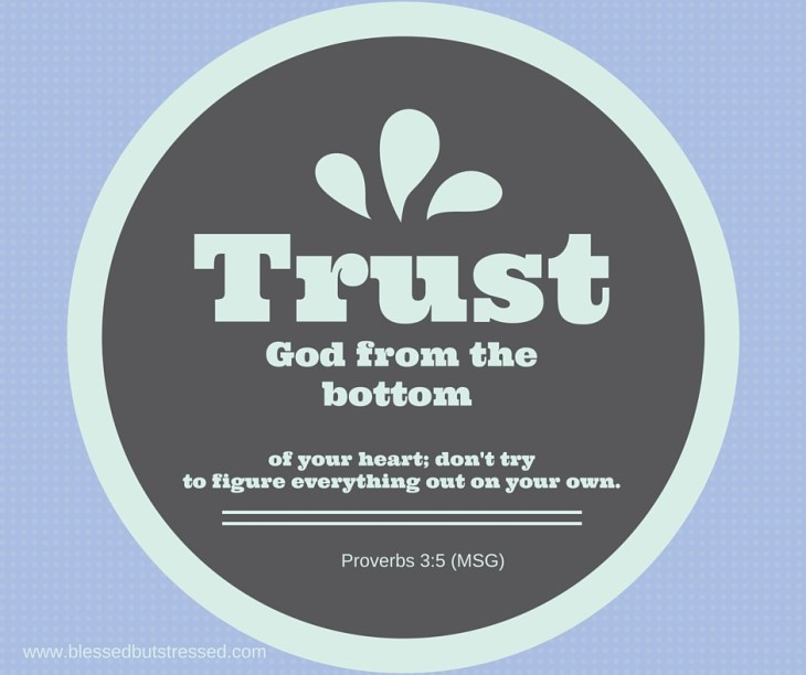 Trust in God, not my own understanding