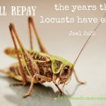 God Makes Up for the Years the Locust Have Eaten