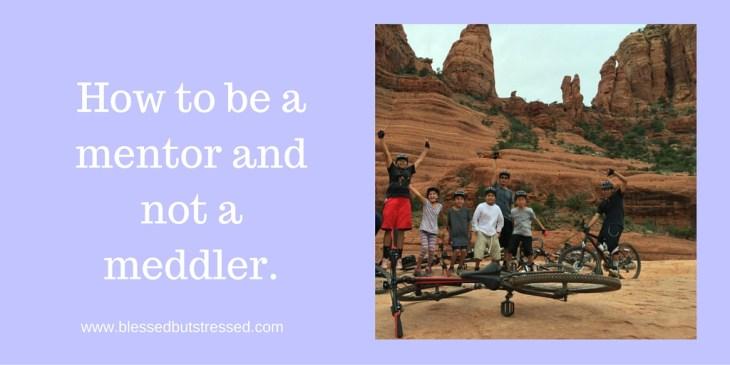 mentor not meddler
