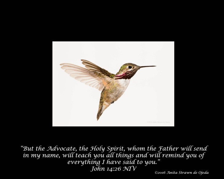 biblepromises-16