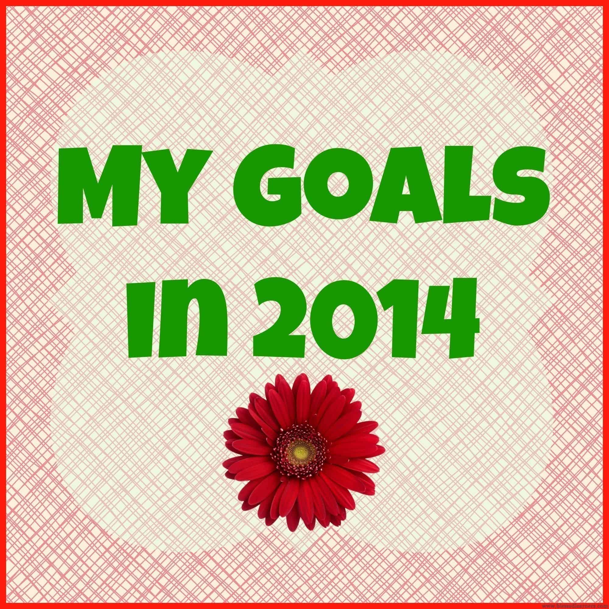 My Goals On February