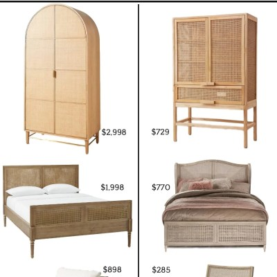 Save vs Splurge Cane Furniture