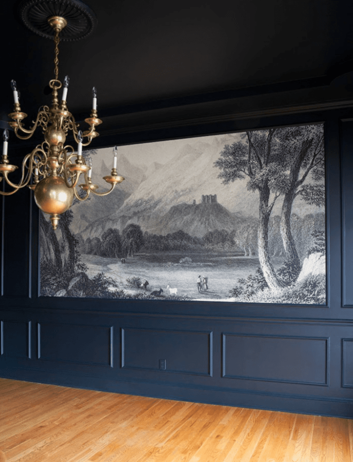 navy picture frame molding with scenic wall mural
