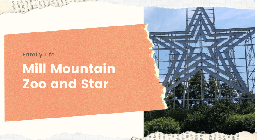 Mill Mountain Zoo and Star