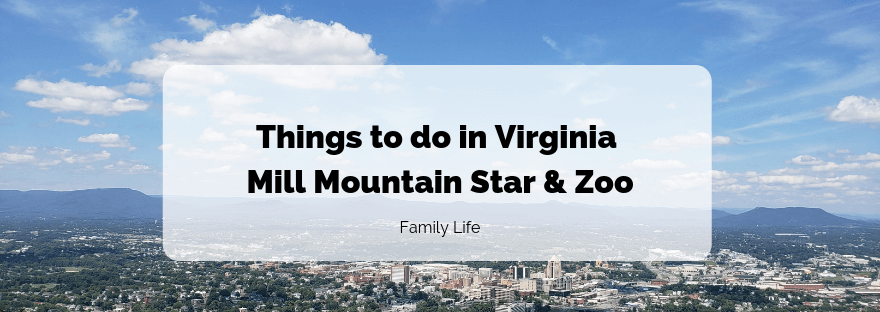 Mill Mountain Star and Zoo