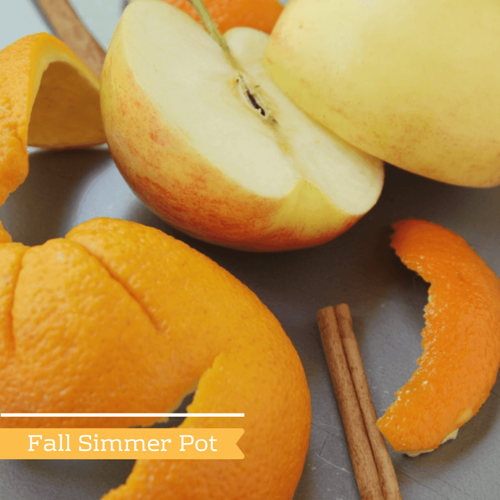 Fall Simmer Pot - Make Your Home Smell Like Fall