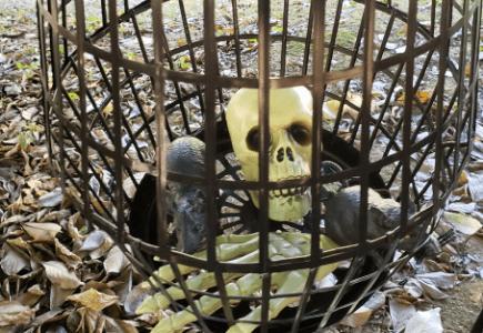Creepy Hanging Cage