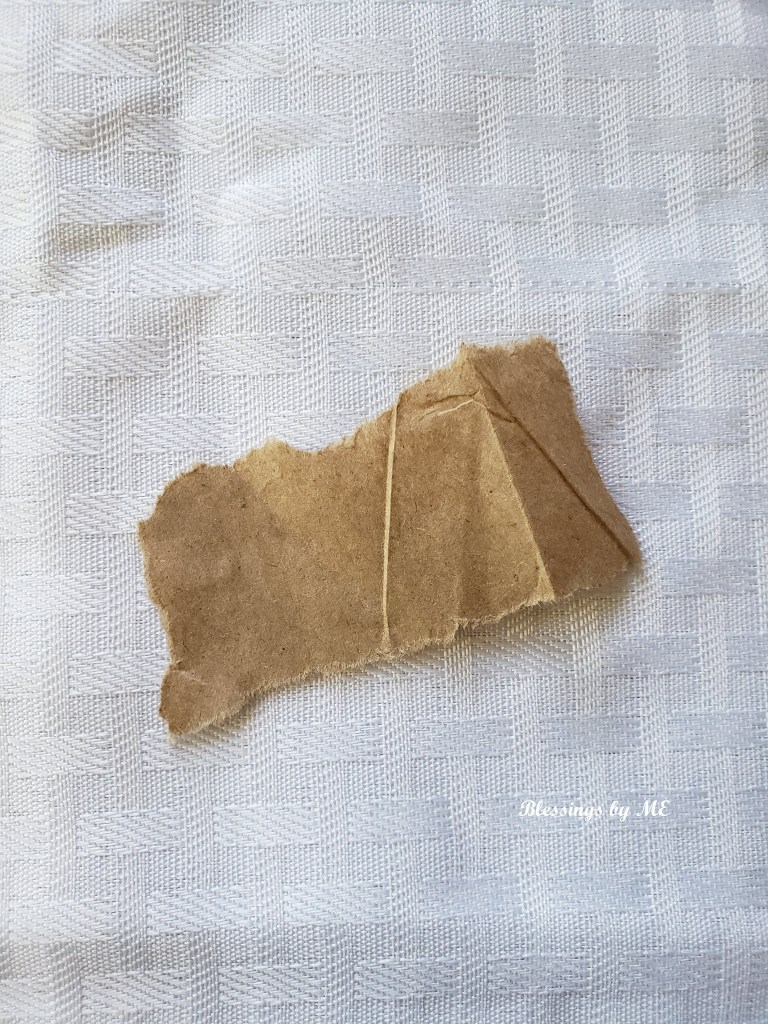 ripped paper bag piece