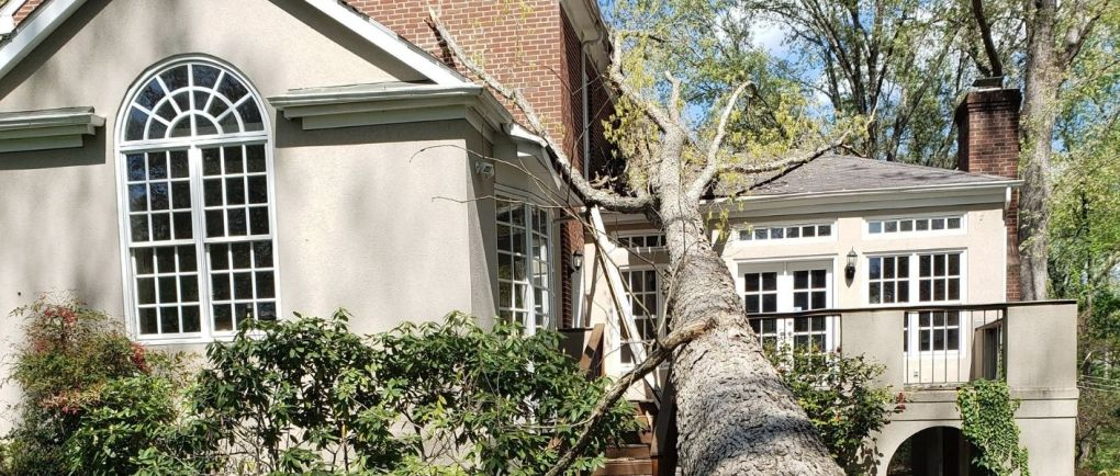 the day the tree fell on our home