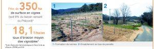 Innovation dans les vignes du Plan-de-la-Tour (83)