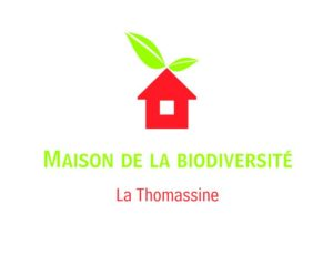 la Thomassine accueille des stage apiculture