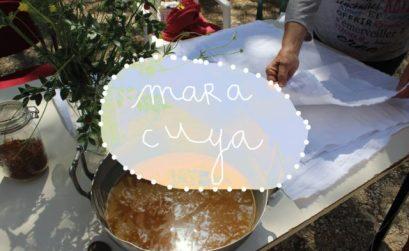 Apprendre la teinture végétale avec Maracuya