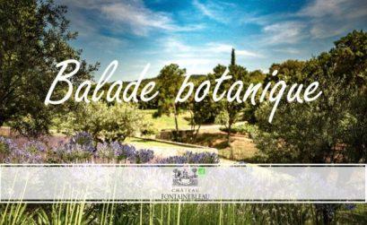 balade botanique au château Fontainebleau du Var