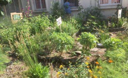 chantier participatif avec Heko Permaculture