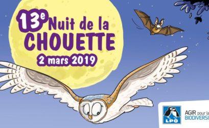 Nuit de la chouette 2019