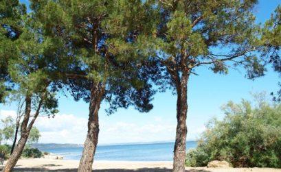 Land'Art à Istres