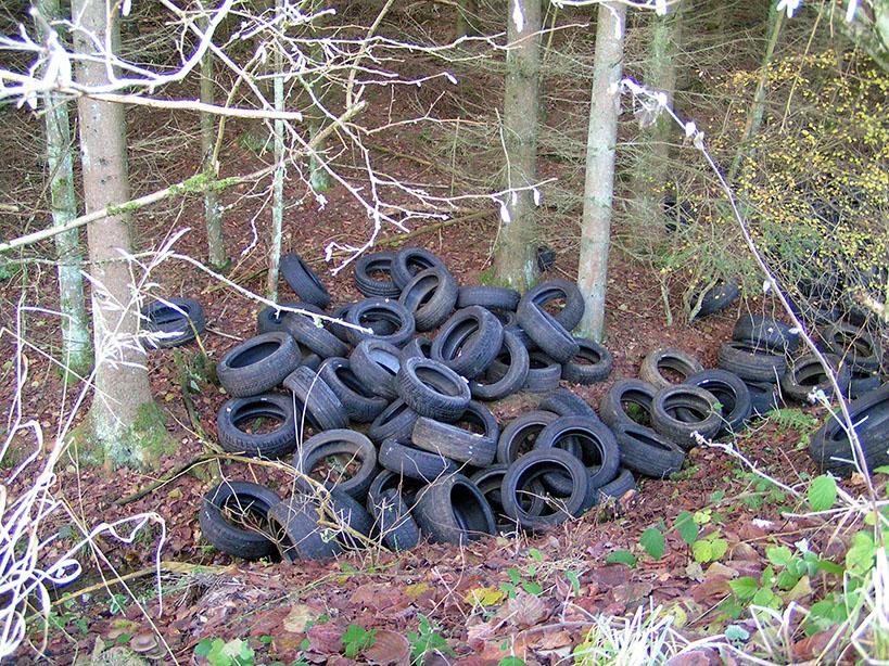 Jede Menge Altreifen landen illegal im Wald