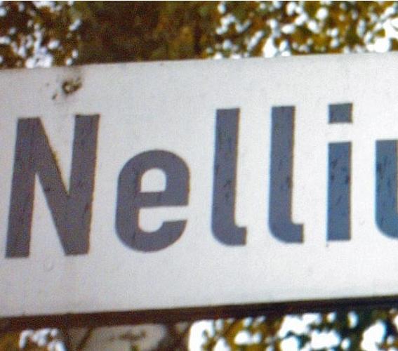 Grüne fordern Debatte im Rat um Bürgerbegehren Nelliusstraße