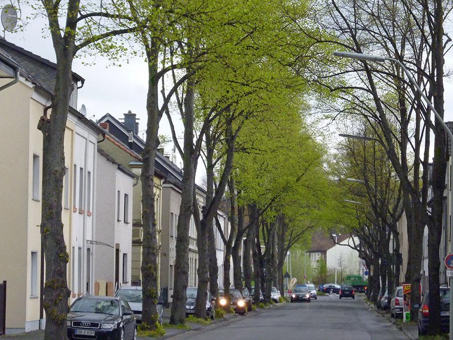 Menschen mit Erinnerungen an Möhnestraße gesucht