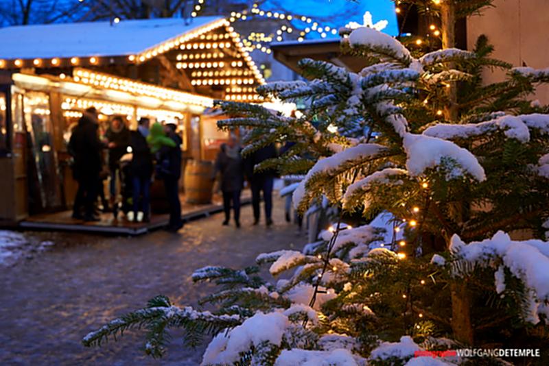 Aktives Neheim bietet Innenstadt-Weihnachtsbäume zum Verkauf an