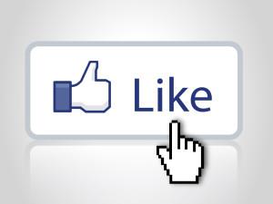 Facebook-följare