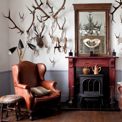 Masculine Decor- Hunting Trophies