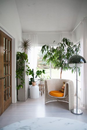 vintage sunroom with white wicker and orange chair, ficus tree and chrome dome lamp