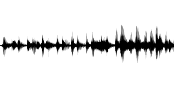 Image representing the sound wave of an audio file.