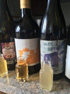 Blind Tasting Buddies, Orange Wines, by Medium Plus (13)