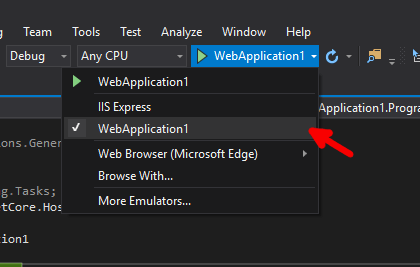 Select the application in the run options