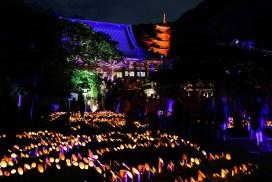 【8/1-9/2】如若仙境:江之島燈籠祭