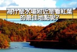 為什麼水壩附近是看紅葉的最佳地點呢?