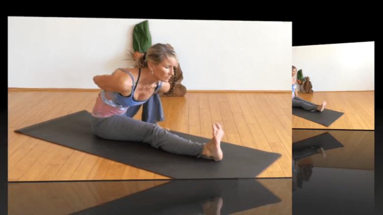 Vinyasa Short: folds, backbends and twists