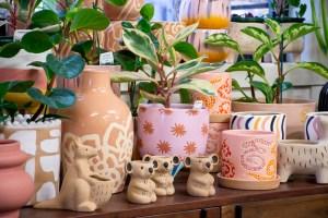 Homewares at Bliss Garden Giftware Canberra