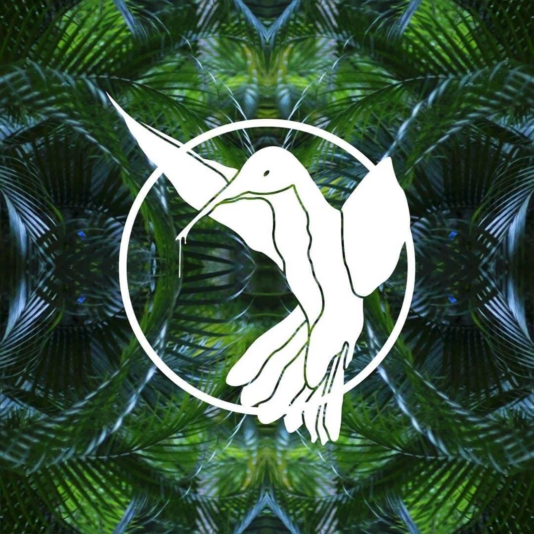 Hummingbird Tapes Image