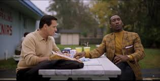 Green book di Farrelly