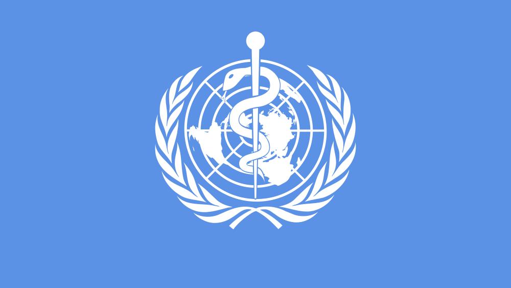 bandiera who