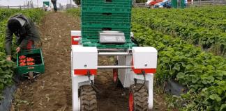 Lincolnshire AI project set to revolutionise UK farming