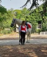 spectacle-equestre-abbatiale-07