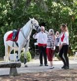 spectacle-equestre-abbatiale-10