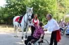 spectacle-equestre-abbatiale-16