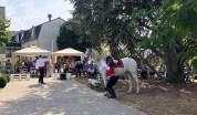 spectacle-equestre-abbatiale-21