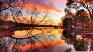 l'automne nous offre souvent de très beaux paysages