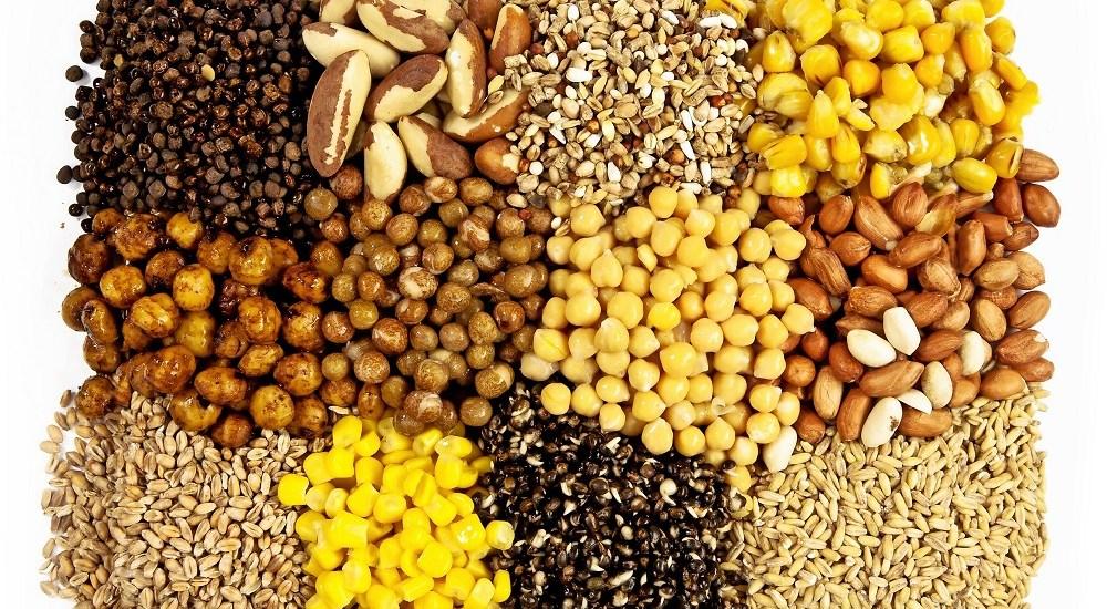 4 graines pour la p che la carpe blog de la carpe for Acheter carpe pour etang