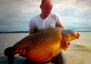 La plus grosse carpe commune a été prise sur le lac du Der