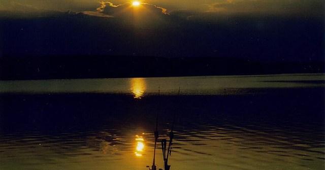 pêche de la carpe en lac