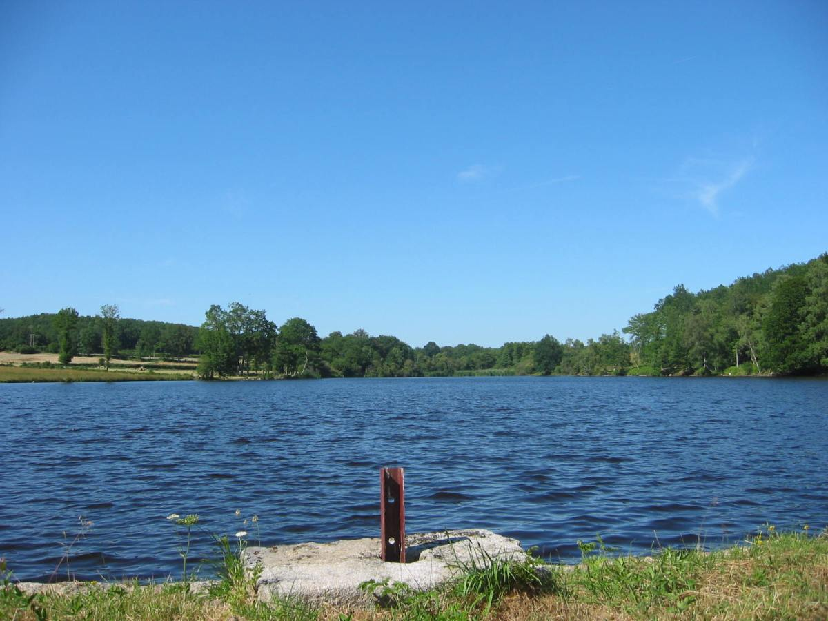Top 5 des meilleurs lieux pour pêcher la carpe