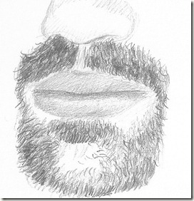 dessin correction barbe roy
