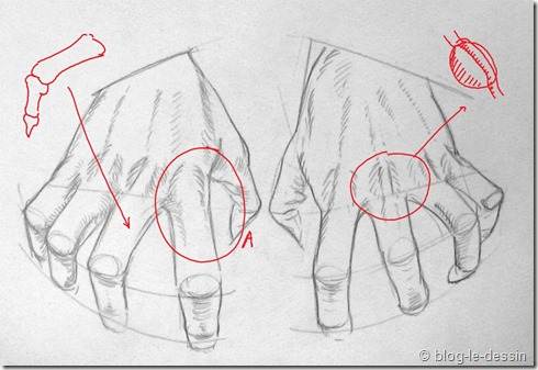 Connaissez vous ces tapes pour apprendre dessiner une main blog le dessin - Dessin de mains ...