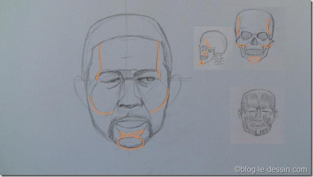 dessiner portrait avec surfaces 6